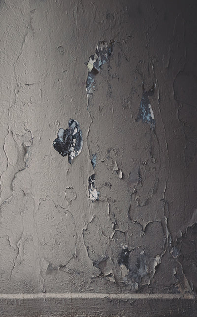 Decaying Wall Backdrop • Textures & Patterns