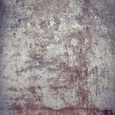 Distressed Plaster Wall • Brick Stone & Plaster