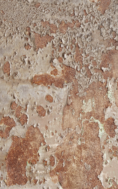 Rusty Wall • Brick Stone & Plaster