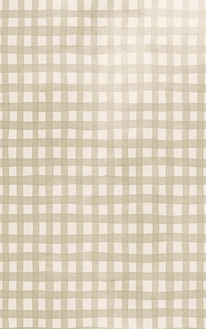 Gingham Beige Backdrop