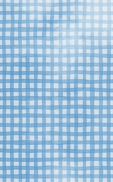 Gingham Blue Backdrop