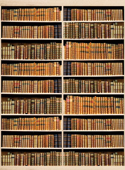 Bookshelf Oak Backdrop
