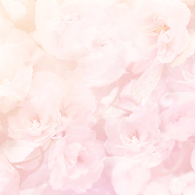 Soft Pink Flowers Backdrop
