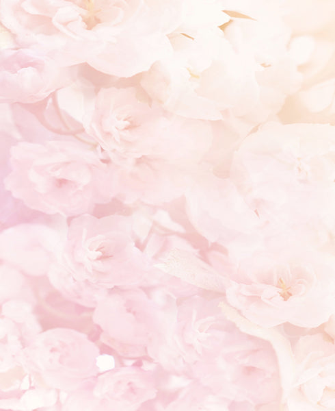 Soft Pink Flowers Backdrop Click Props Backdrops