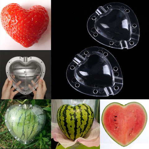 THE AMAZING FRUIT & VEGETABLE MOLD (50% OFF)