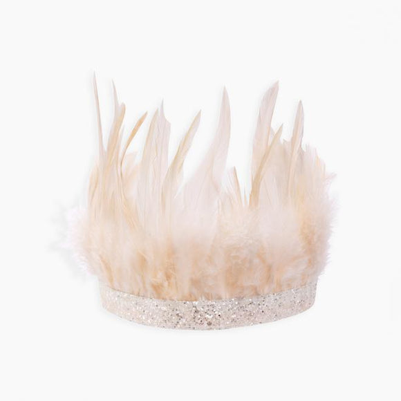 Pink Feather party crown