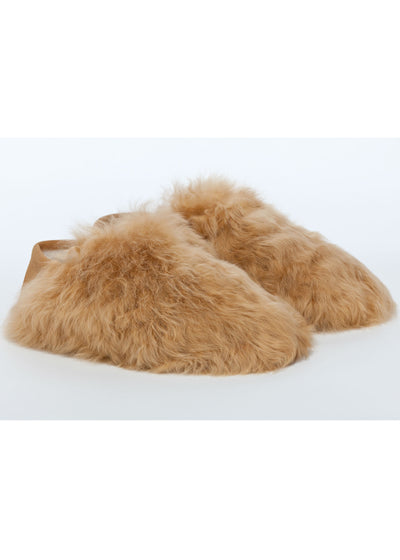Honey Express Slippers