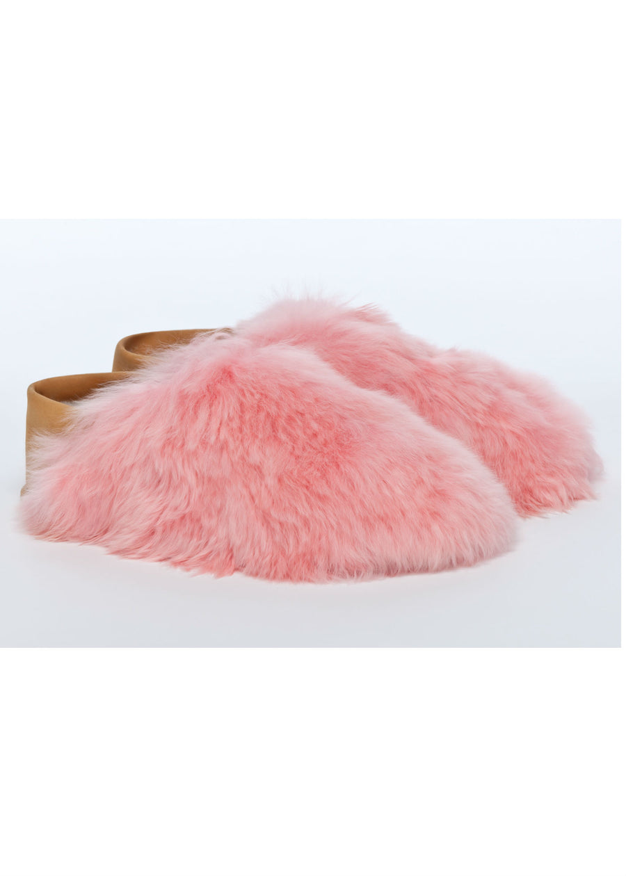 Pink Express Slippers