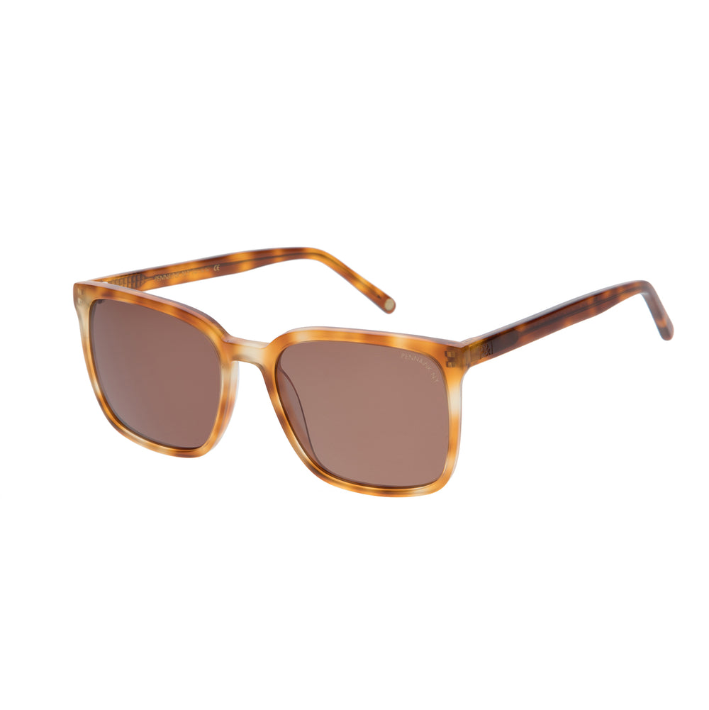 814- tortoise / lens brown