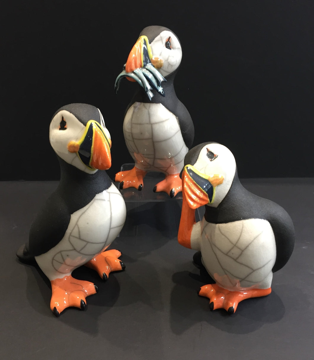 The Set - A circus of puffins
