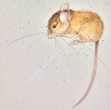 Amelia Woodmouse by Kate Wyatt