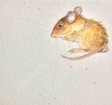 Emily Woodmouse