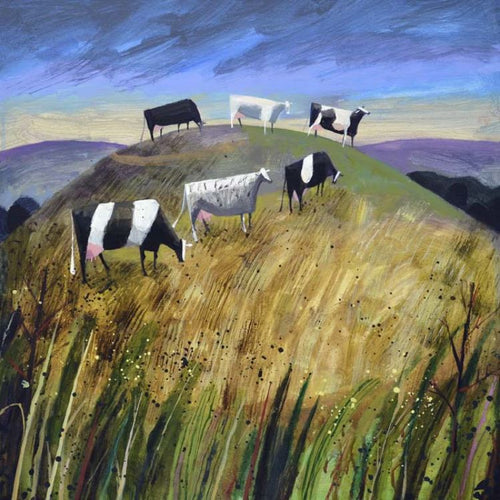 Hill Cows