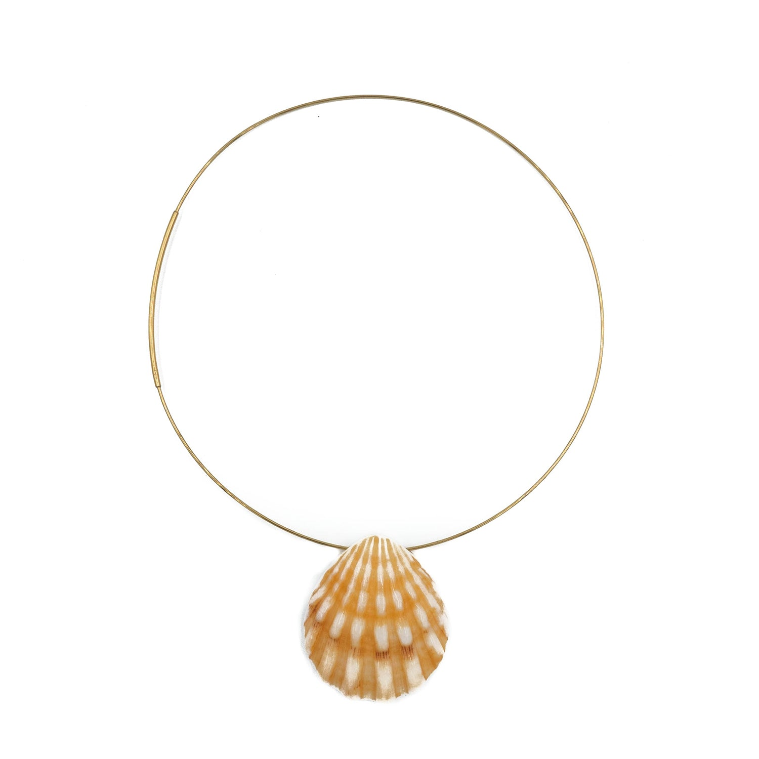 Shelly Necklace, Shell