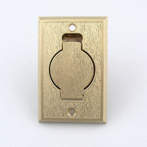 015520-Central Vacuum Inlet Brass Metal