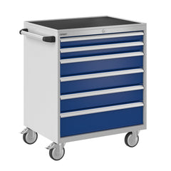 Bisley ToolStor Industrial 6 Drawer Mobile Cabinet - BIS600235W
