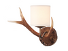 DAVID HUNT ANT0729S ANTLER 1 LIGHT WALL LIGHT