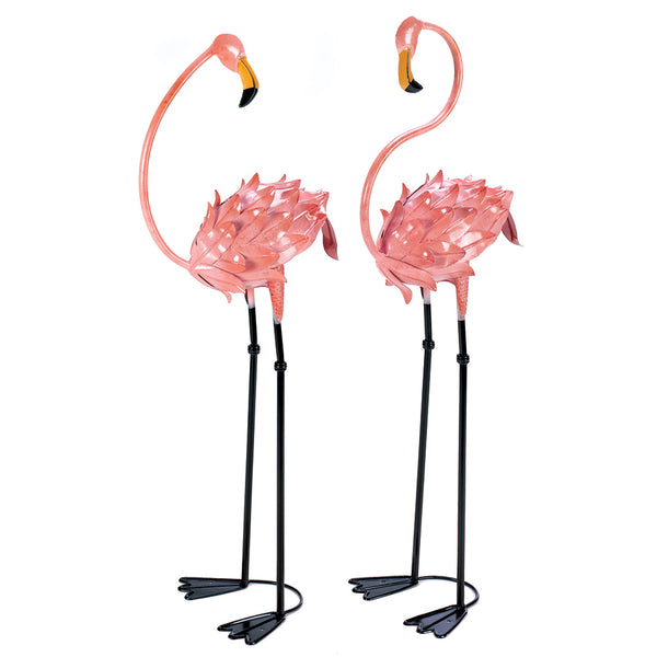 Flamboyant Flamingo Stakes - Red Dragon Unleashed