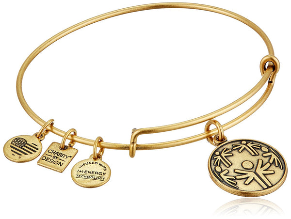 Alex and Ani Charity By Design Power of Unity Bangle Bracelet