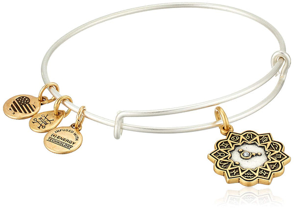 Alex and Ani Women's Cancer Two Tone Bangle Bracelet