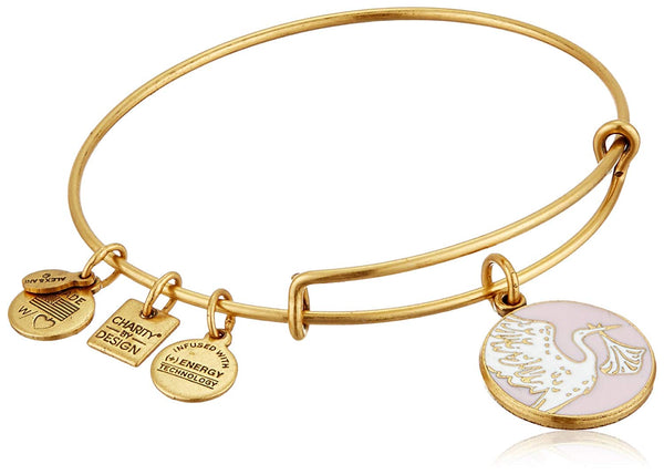 Alex and Ani Charity By Design Special Delivery Bangle Bracelet