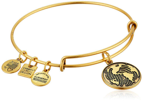 Alex and Ani Charity By Design Generation On Bangle Bracelet