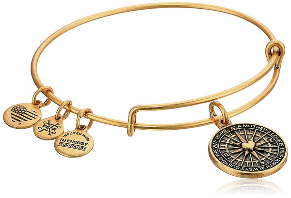 Alex and Ani True Direction Rafaelian Bangle Bracelet