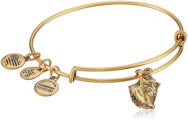 Alex and Ani Conch Shell II EWB, Bangle Bracelet