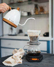 Brewista Essentials™ Pour Over Paper Filters - FREE Sample Pack! (Choose from 2 styles) - Brewista