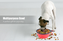 Portable Dog bowl