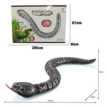 RC Snake Toy