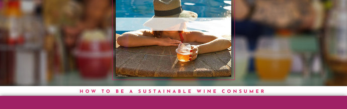 How To Be A Sustainable Wine Consumer