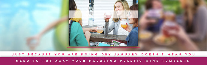 Just Because You Are Doing Dry January Doesn't Mean You Need To Put Away Your HaloVino Plastic Wine Tumblers