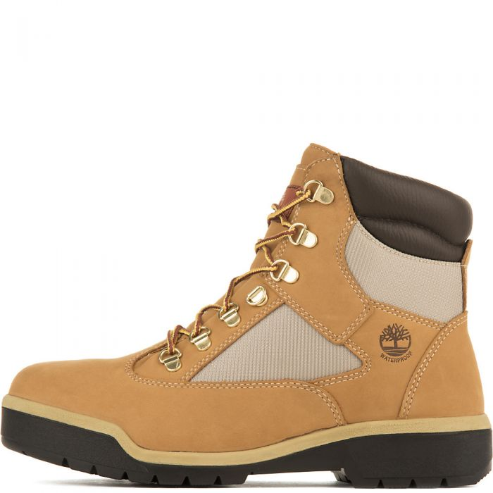 Timberland FIELD BOOT 6 IN F/L WP Men's - WHT