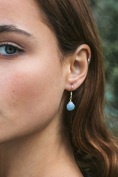 Owyhee Blue Opal Teardrop Earrings - Luna Tide
