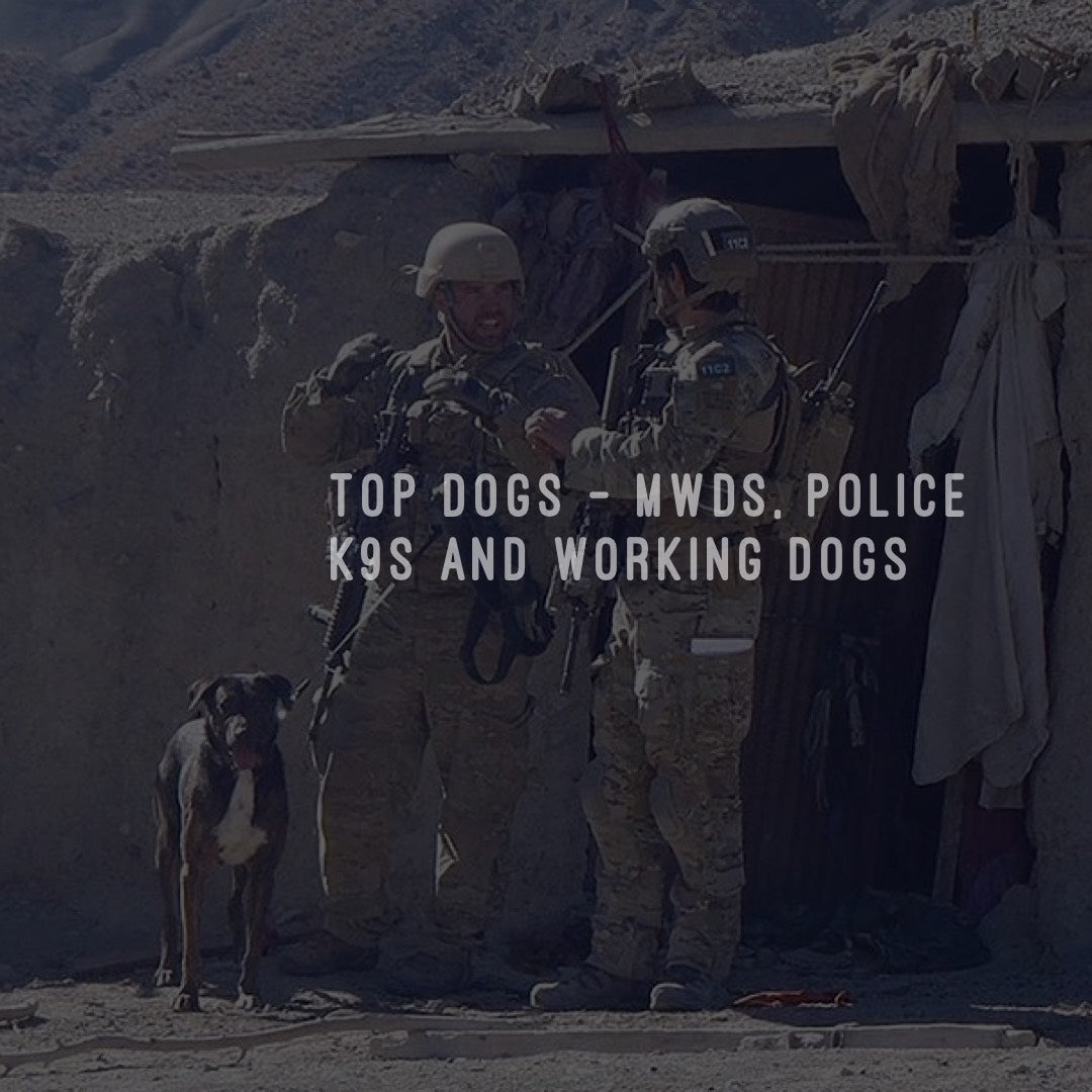 Top Dogs - MWDs, Police K9s and Working Dogs