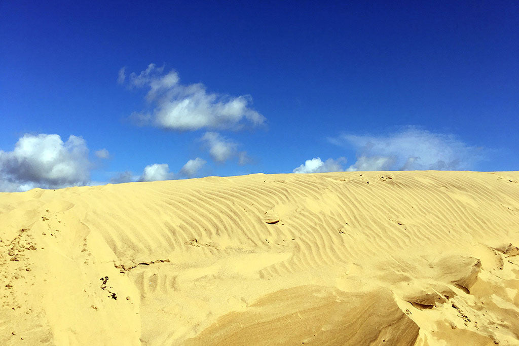 Getting to Camber Sands – TN31 7RJ