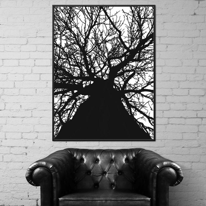 Black & White Tree - Andy Brackpool - NicheCanvas