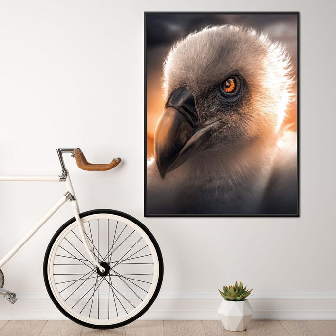 Vulture - Zenzdesign Multi Panel Canvas Wall Art - NicheCanvas