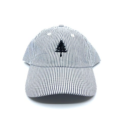 4EVERGREEN Striped Dad Hat - EYE Clothing Company