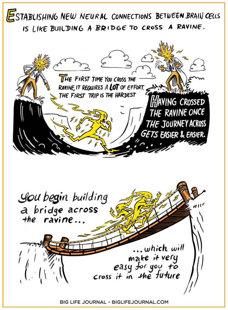 Build a Bridge - Neuroplasticity - Big Life Journal