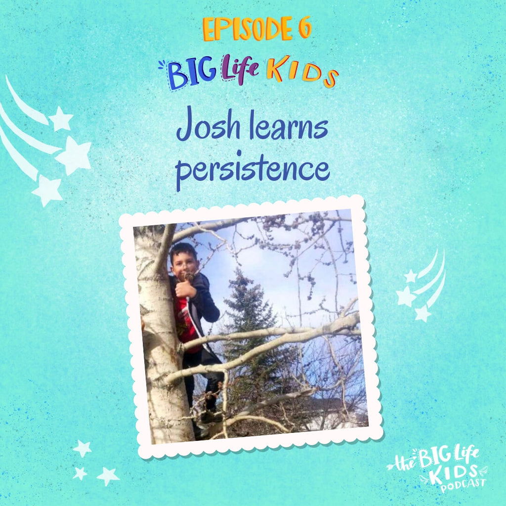 Big Life Kids Stories: Josh Learns Persistence