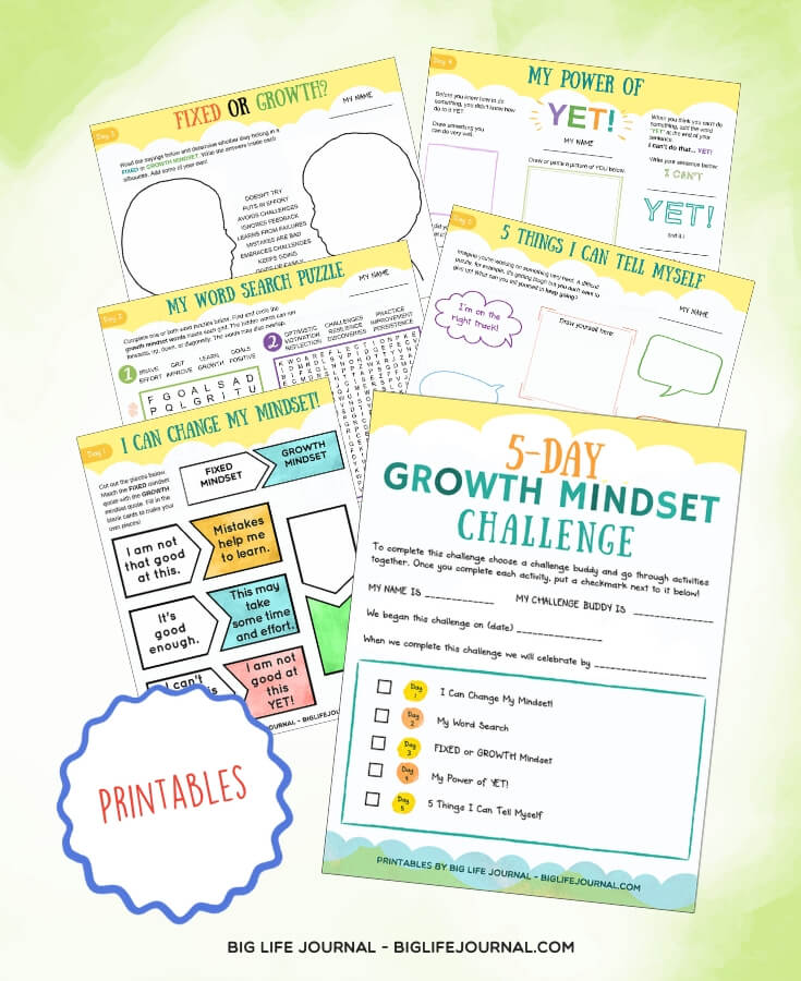 Growth Mindset Challenge - Big Life Journal