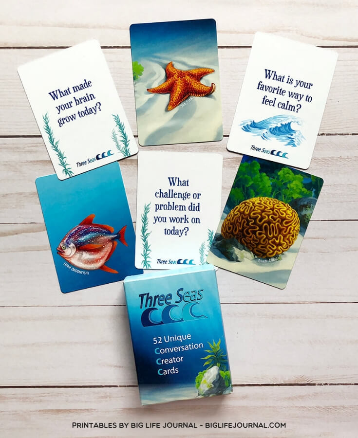 Three Seas Conversation Cards- big life journal