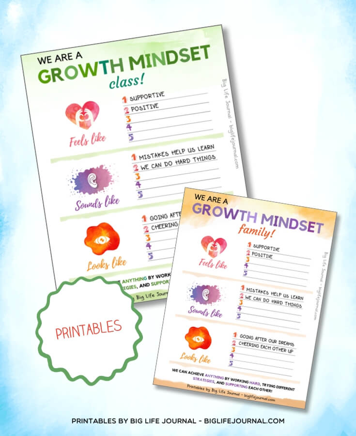 We are a Growth Mindset - Big Life Journal