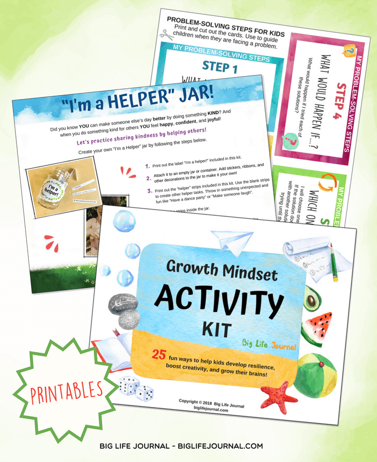 activities kit big life journal