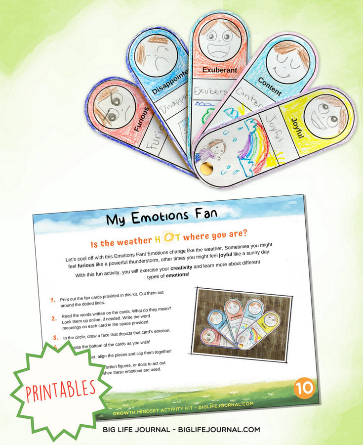 emotion fan - big life journal