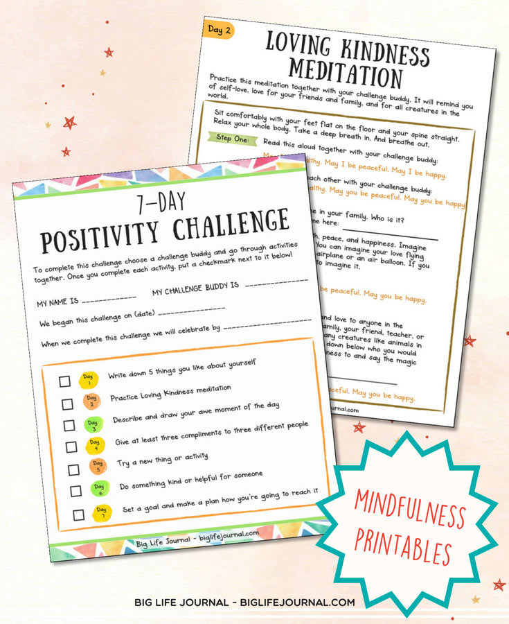 positivity challenge big life journal