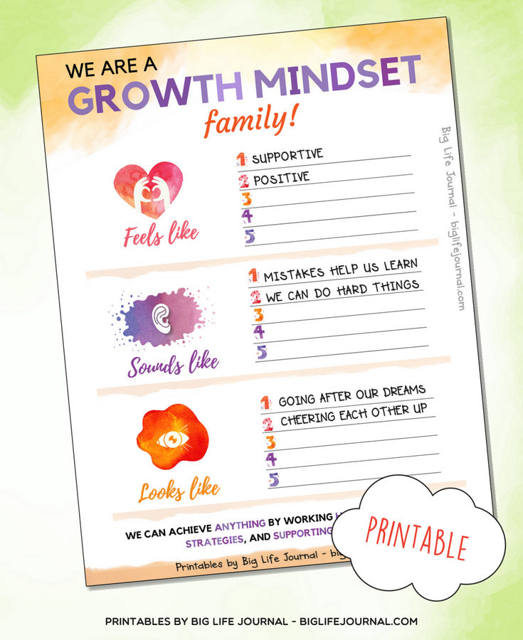 we are growth mindset - big life journal