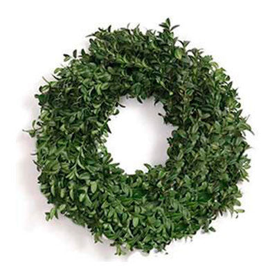 Boxwood Wreath 24